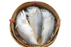 Trois poissons de maquereau dans le panier photographie stock libre de droits