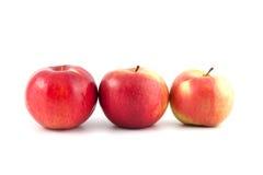 Trois pommes Images libres de droits