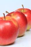 Trois pommes Image stock