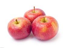 Trois pommes Photos stock