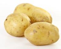 Trois pommes de terre Image libre de droits