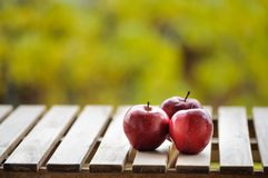 Trois pommes rouge foncé sur la surface en bois dehors Photos stock