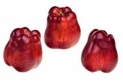 Trois pommes rouges. Images libres de droits