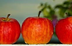 Trois pommes rouges images libres de droits