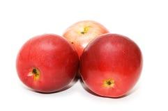 Trois pommes rouges d'isolement sur le blanc Images stock