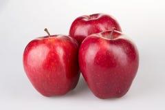 Trois pommes rouges sur le blanc Image libre de droits