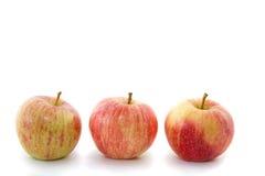 Trois pommes rouges sur une rangée Image libre de droits
