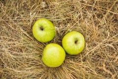 Trois pommes sur le dessus Photos libres de droits