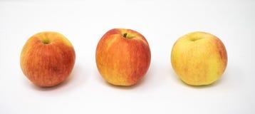 Trois pommes sur un fond blanc photos libres de droits