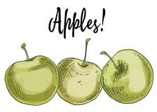 Trois pommes vertes Delicious d'isolement sur le fond blanc Illustration de vecteur Photographie stock