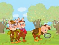 Trois porcs Photographie stock libre de droits
