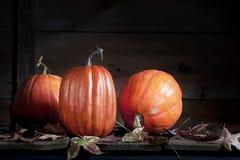 Trois potirons d'automne avec des feuilles d'automne photos stock