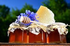 Trois pots complètement de miel frais délicieux, de morceau de plongeur de miel de nid d'abeilles et de fleurs sauvages dans le ru Images libres de droits