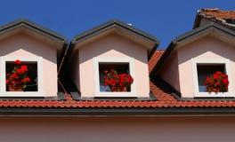 Trois pots de géraniums sur les trois Windows de la Chambre Photographie stock