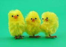 Trois poulets de jouet de Pâques sur le vert photos libres de droits