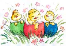 Trois poulets heureux Images stock