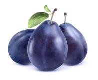 Trois prunes bleues sur le fond blanc Photographie stock
