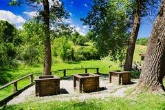 Trois puits au bord de la forêt photo stock