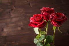 Trois roses rouges avec des gouttes de l'eau sur un fond foncé Image libre de droits