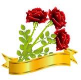 Trois roses rouges et rubans d'or sur un fond blanc Photos libres de droits