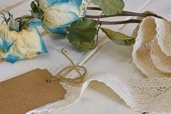 Trois roses sèches Photos libres de droits