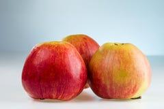 Trois rouges et pommes jaunes Photographie stock libre de droits