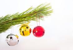 Trois rouleaux sur une branche d'arbre de Noël Images libres de droits