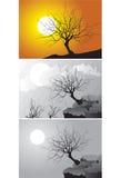 Trois scènes d'arbre Images libres de droits