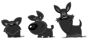 Trois Schnauzers géants drôles. illustration libre de droits