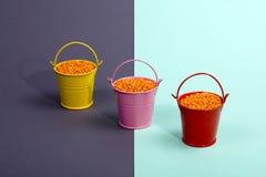 Trois seaux multicolores avec les haricots oranges de lentille Images stock