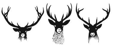 Trois silhouettes de têtes de cerfs communs Photo stock
