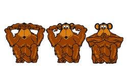 Trois singes velus bruns Images libres de droits