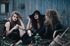 Trois sorcières de vintage recueillies pour le Sabbat Photographie stock libre de droits