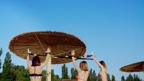 Trois sportifs, jeunes femmes sexy dans des maillots de bain, instructeurs, faisant s'exerce avec le système de trx de forme phys banque de vidéos