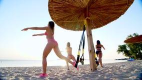 Trois sportifs, jeunes femmes sexy dans des maillots de bain, instructeurs, faisant s'exerce avec le système de trx de forme phys clips vidéos