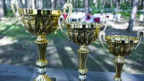 Trois tasses de gagnant de la premier deuxième et le troisième endroit dans le podium, extérieurs clip trophées banque de vidéos