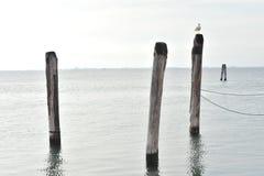Trois terminaux sur la lagune Image stock