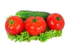 Trois tomates et concombres Image stock