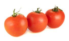 Trois tomates fraîches sur un fond blanc Image stock