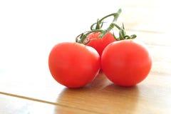 Trois tomates mûres sur la vigne avec le contre-jour lumineux Photographie stock