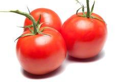 Trois tomates rouges d'isolement sur le blanc Photo libre de droits