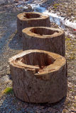 Trois tronçons sur des cailloux Photo stock