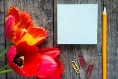 Trois tulipes colorées sur une table en bois Blanc de bloc-notes pour le texte Photo libre de droits