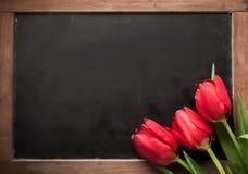Trois tulipes rouges sur une ardoise d'école de vintage Photos stock