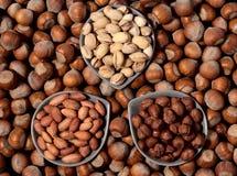 Trois types de noix Photographie stock