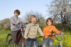 Trois vélos de tour de frères Image stock