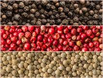 Trois variations des grains de poivre Bannières des épices Photo libre de droits