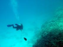 Troisième dimension en Mer Rouge photos libres de droits
