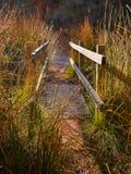 ?troit d'un pont en bois sur une abondance de rivi?re des herbes et des pr?cipitations dans la lumi?re ensoleill?e du lever de so image stock