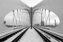 Troja bro, Prague stad modern arkitekturdetalj abstrakt arkitekturbakgrund Fotografering för Bildbyråer
